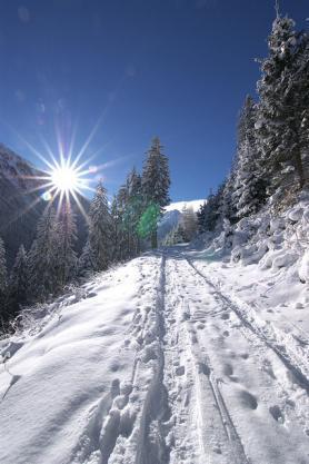 Běžkařská stopa ve Stubaitalu